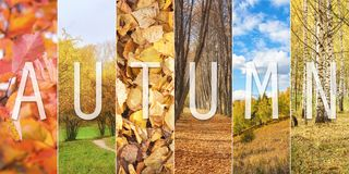 Set of Autumn Vertical Scenery with Text Caption. As Fall Collage stock photos