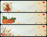 Set of autumnal banners. With pumpkins, cereals and ashberries royalty free illustration