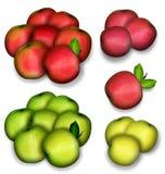 Set av äpplen Arkivfoton