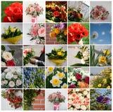 Set av 25 blom- bilder Royaltyfri Bild