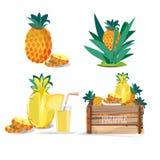 Set av ananas fruktsaft - Arkivfoto