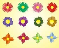 Set av blomman Royaltyfri Foto