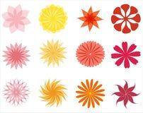 Set av blomman Royaltyfria Bilder