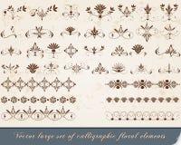 Set av calligraphic designelement Arkivbilder