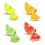 Set av citrusfrukt royaltyfri illustrationer
