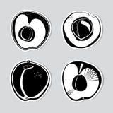 Set av dekorativa aprikosar Arkivfoton