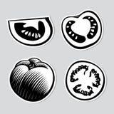 Set av dekorativa tomater Fotografering för Bildbyråer