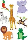Set av djur Arkivfoton