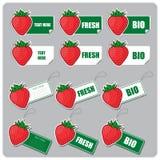 Set av etiketter och etiketter med jordgubbar Royaltyfri Fotografi