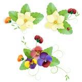 Set av försiktigt blom- Arkivbild