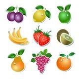 Set av frukt Fotografering för Bildbyråer