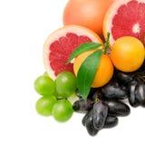 Set av frukter och bär royaltyfria foton