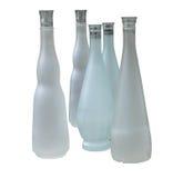 Set av härliga flaskor utan etikett Arkivbild
