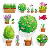 Set av krukväxter stock illustrationer
