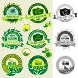 Set av organiska logoer, etiketter, emblem och etiketter Arkivfoton