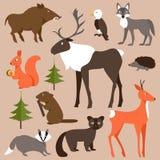 Set av skogdjur också vektor för coreldrawillustration Arkivbilder