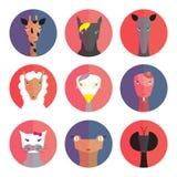 Set avatars animals (female) flat style. Royalty Free Stock Image