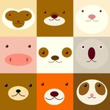 Set of avatars icons with faces of cute animals Stock Photo