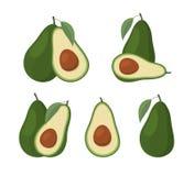 Set avocados na białym tle Obrazy Royalty Free