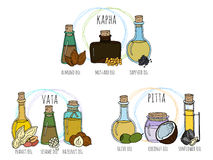 Set of ayurvedic oils. Set of hand drawn vector bottles with different massage oils. Selection oils for pitta, kapha and vata doshas. Ayurvedic therapy Stock Images