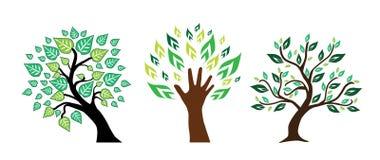 Set Bäume lizenzfreie abbildung