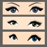 Set błękitni i zieleni oczy Ilustracja Wektor