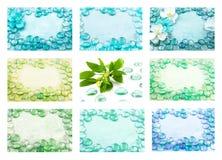 Set błękitny szkło opuszcza z świeżą rośliną, aqua tła Obrazy Stock