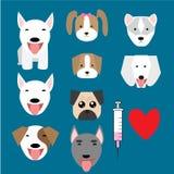 Set of baby dog logo and syringe Stock Images