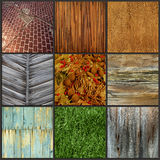 Set background image surface at different wood, grass, tile. Royalty Free Stock Photography
