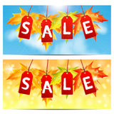 Set of backgrounds about the autumn sale. Word sale on red labels decorated with autumn maple leaves.set of backgrounds about the autumn sale Royalty Free Stock Image