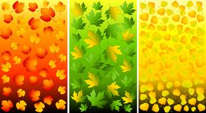 Set of backgrounds with autumnal leaves. Royalty Free Stock Photography