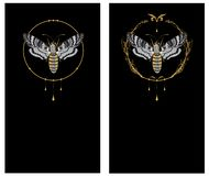 Set of backgrounds with butterfly death head. Hawk in gold and black colors royalty free illustration