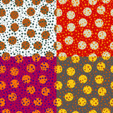 Set of backgrounds colored circles Stock Image