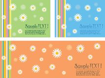 Set of backgrounds with daisies Stock Image