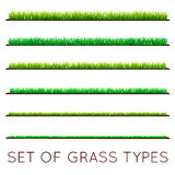 Set of Backgrounds Of Green Grass, Isolated On White Background,. Vector Illustration Royalty Free Stock Photo