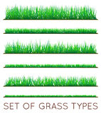 Set of Backgrounds Of Green Grass,  On White Background,. Vector Illustration Royalty Free Stock Image