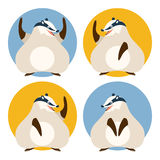 Set of badgers Stock Image