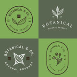 Set of badges, banner, labels and logos for botanical natural product, shop. Leaf logo, flower logo. Royalty Free Stock Image