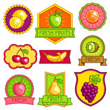 Set of badges and labels with stylized fresh ripe Royalty Free Stock Images