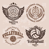 Set Badges logos volleyball teams and tournaments, championships volleyball. Stock Photo