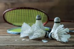 Set of badminton. Paddle and the shuttlecock Stock Image