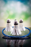 A set of badminton. Paddle and the shuttlecock. Stock Image