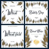 Set of Bakery backgrounds with wheats. Linear graphic. Bread banner collection. Bread house. Vector illustration. stock photos