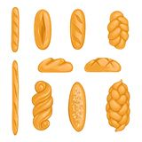 Set of bakery products. Bread, loaf, hala, baguette in cartoon style vector illustration