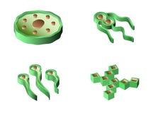 Set bakterie i wirusowe isometric ikony Zdjęcie Stock