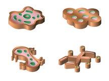 Set bakterie i wirusowe isometric ikony Obraz Stock