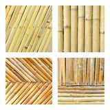Set of bamboo fence Royalty Free Stock Photo