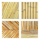 Set bambusa ogrodzenie Zdjęcie Royalty Free