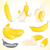 Set of banana in various styles  format Stock Photos