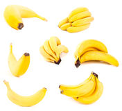 Set of bananas Royalty Free Stock Image